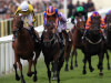 Laura Mongan reveals St Leger hero Harbour Law is out for the season