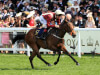 Heartache pencilled in for Prix Robert Papin