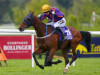 Wicklow Brave and Frontiersman in line for Curragh Cup clash