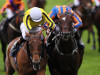 Big Orange on Goodwood Cup collision course with Order Of St George