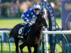 Morando stars in quality field for Desmond Stakes at Leopardstown