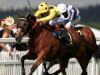 Roger Varian - Exciting options open to Ajman Princess