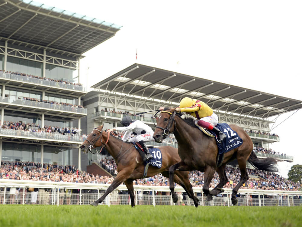 Magical Marsha Denies Lady Aurelia In Nunthorpe Thriller