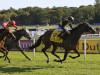 Brorocco swoops to collect valuable Newbury handicap