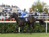 Owen Burrows outlines Doncaster and York options for Shabaaby