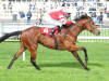 Fozzy Stack mulling Abbaye challenge with Son Of Rest