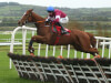 Samcro off to perfect start over hurdles as Elliott hits rivals for six