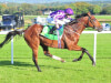 Aidan O'Brien has Derby big guns in line for Doncaster