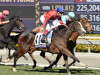 Queen's Trust on course for Breeders' Cup title defence