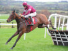 Gordon Elliott plays down significance of Mitchouka's Punchestown win