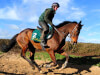 Tingle Creek 'number one' target for Douvan return