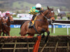 Defi Du Seuil tops Coral Hurdle hopefuls at Ascot