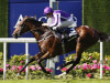 Highland Reel signs off with brave Hong Kong Vase victory
