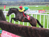 Jessica Harrington in no rush to make Sizing John plan after impressive return