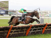 Buveur D'Air primed for Christmas crack at Kempton