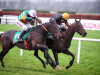 Gran Geste delivers at Navan for Liz Doyle