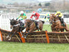 My Tent Or Yours earns International honours in Cheltenham epic