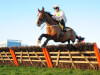 Willie Mullins 'as happy as can be expected' with Faugheen