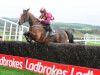 Henry De Bromhead could send Monalee to bid for Leopardstown atonement