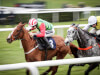 Forest Bihan on track for Doncaster assignment