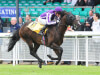 Aidan O'Brien's U S Navy Flag crowned champion juvenile