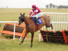 Gordon Elliott lands telling Blow in Thurles feature