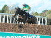O'Brien reports Edwulf on course to bid for Gold Cup glory at Cheltenham