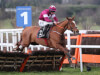 Samcro must improve to win at Cheltenham, insists Elliott