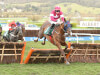 Gordon Elliott strikes another Blow at Cheltenham