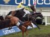 Le Prezien storms home to claim Grand Annual spoils
