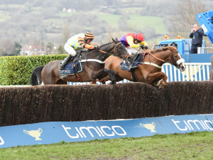 Native River and Might Bite show themselves to be quality gold cup horses