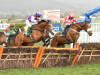 Delight for Bridget Andrews with County Hurdle success for Mohaayed