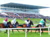 Wintry blast claims Limerick card