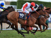 All roads lead to another Cheltenham Foxhunter bid for Pacha Du Polder