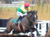Jessica Harrington considering Aintree and Punchestown for Supasundae