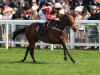 Flying filly Heartache on course to test Commonwealth Cup claims