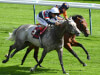 Frankie Dettori booked as Magical Memory has Dubai date
