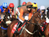 Waley-Cohens excited for another Aintree adventure
