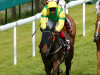 Lancelot Du Lac firmly in Trophy hunt at Doncaster