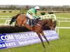 Great Field defies absence to dominate Webster Cup at Navan