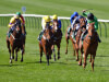 Anna Nerium floors better-fancied rivals in Free Handicap at Newmarket