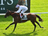 Verbal Dexterity ruled out of 2000 Guineas