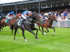 Aidan O'Brien committed to Navan pot with Sioux Nation