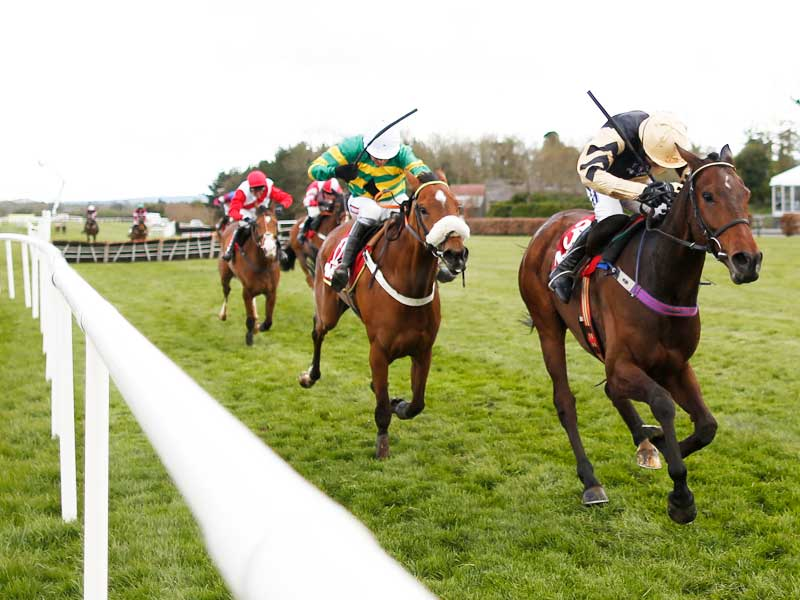 Watch the Punchestown Festival online