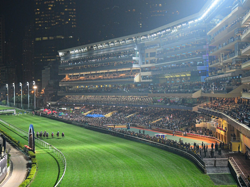 Follow the action at Happy Valley