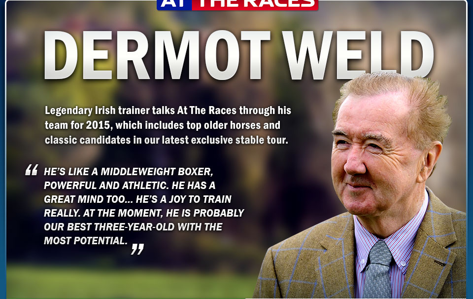 Legendary Irish trainer talks At The Races through his team for 2015, which includes top older horses and classic candidates in our latest exclusive stable tour